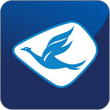 Blue Bird Group - Logo